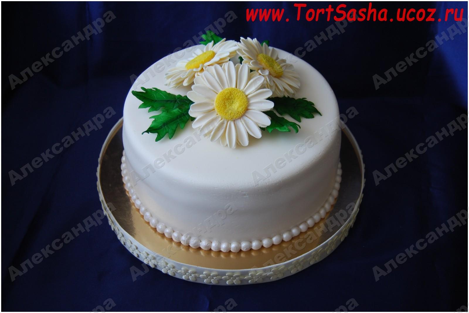 Мастичные торты фото лучшие торты